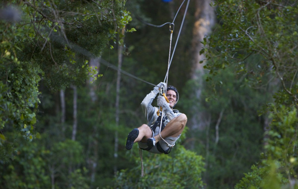 Adrenaline Plett attractions and options abound!